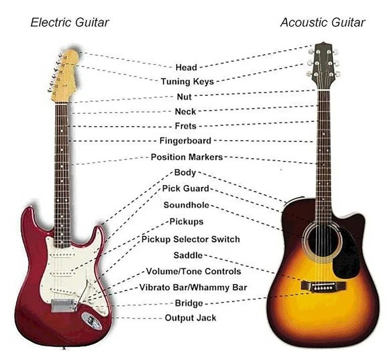 parts-on-an-acoustic-and-electric-guitar